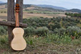 Auch ein schöner Rücken kann entzücken: Meine Neue aus Ahorn mit Blick auf die Olivenhaine der Maremma südlich von Grosseto