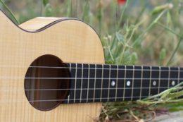Für eine bessere Klangreflexion ist auch im Inneren der Ukulele eine hauchdünne Schicht Schellack aufgetragen